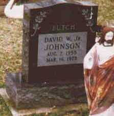 JOHNSON, DAVID W - Fayette County, Ohio | DAVID W JOHNSON - Ohio Gravestone Photos