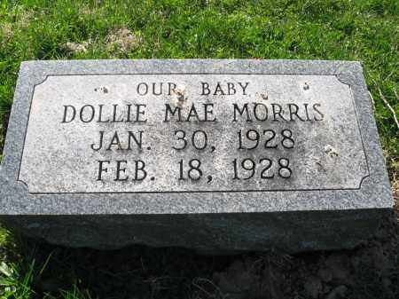 MORRIS, DOLLIE MAE - Fayette County, Ohio | DOLLIE MAE MORRIS - Ohio Gravestone Photos