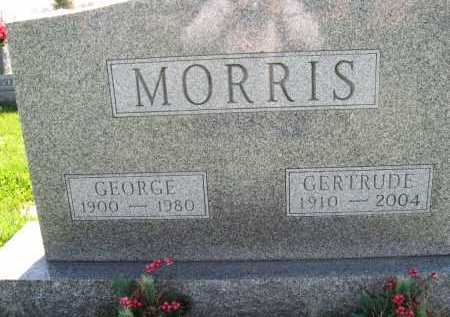 MORRIS, GEORGE - Fayette County, Ohio | GEORGE MORRIS - Ohio Gravestone Photos