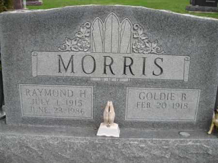 GREENLEY MORRIS, GOLDIE BELLE - Fayette County, Ohio | GOLDIE BELLE GREENLEY MORRIS - Ohio Gravestone Photos