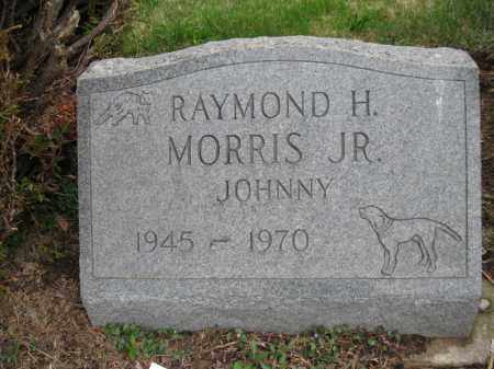 MORRIS, RAYMOND HOYT JR (JOHNNY) - Fayette County, Ohio | RAYMOND HOYT JR (JOHNNY) MORRIS - Ohio Gravestone Photos