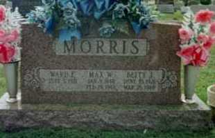 MORRIS, WARD F - Fayette County, Ohio | WARD F MORRIS - Ohio Gravestone Photos