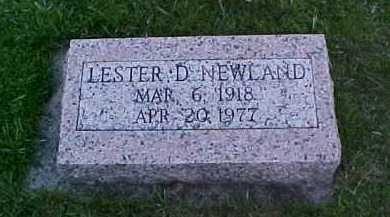 NEWLAND, LESTER D. - Fayette County, Ohio | LESTER D. NEWLAND - Ohio Gravestone Photos