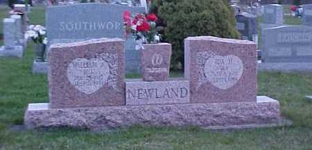NEWLAND, WILLIAM - Fayette County, Ohio | WILLIAM NEWLAND - Ohio Gravestone Photos