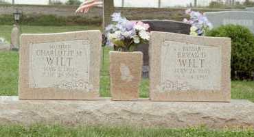 STOUT WILT, CHARLOTTE - Fayette County, Ohio | CHARLOTTE STOUT WILT - Ohio Gravestone Photos