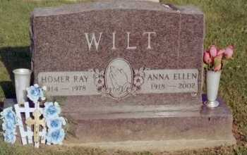 WILT, ANNA - Fayette County, Ohio | ANNA WILT - Ohio Gravestone Photos
