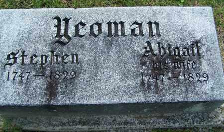 YEOMAN, ABIGAIL - Fayette County, Ohio | ABIGAIL YEOMAN - Ohio Gravestone Photos