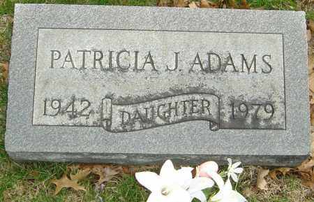 ADAMS, PATRICIA J - Franklin County, Ohio | PATRICIA J ADAMS - Ohio Gravestone Photos