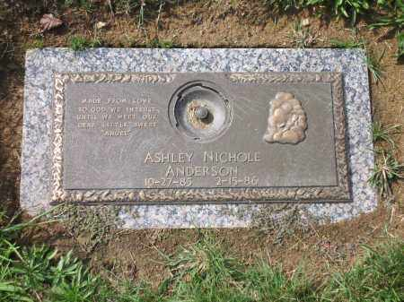 ANDERSON, ASHLEY NICOLE - Franklin County, Ohio | ASHLEY NICOLE ANDERSON - Ohio Gravestone Photos