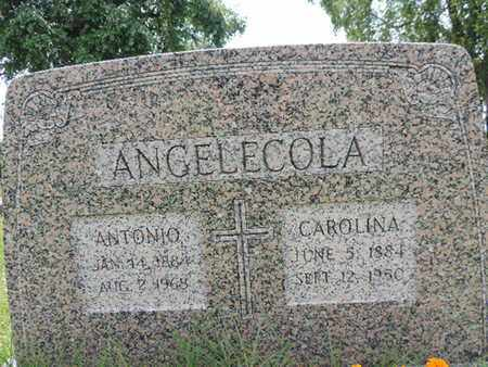 ANGELECOLA, ANTONIO - Franklin County, Ohio | ANTONIO ANGELECOLA - Ohio Gravestone Photos