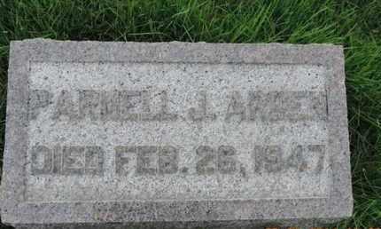 ARDEN, PARNELL J - Franklin County, Ohio | PARNELL J ARDEN - Ohio Gravestone Photos