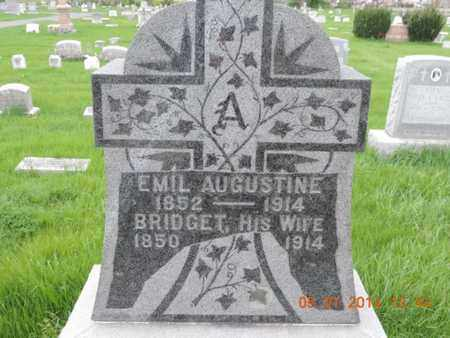 AUGUSTINE, BRIDGET - Franklin County, Ohio | BRIDGET AUGUSTINE - Ohio Gravestone Photos