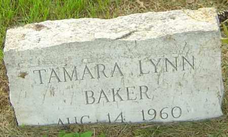 BAKER, TAMARA LYNN - Franklin County, Ohio | TAMARA LYNN BAKER - Ohio Gravestone Photos