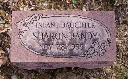 BANDY, SHARON - Franklin County, Ohio | SHARON BANDY - Ohio Gravestone Photos