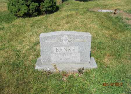 BANKS, JUANITA - Franklin County, Ohio | JUANITA BANKS - Ohio Gravestone Photos