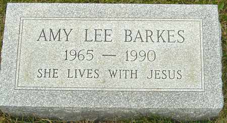 BARKES, AMY LEE - Franklin County, Ohio | AMY LEE BARKES - Ohio Gravestone Photos