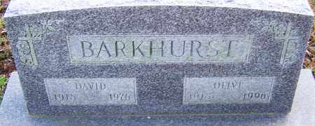 BARKHURST, DAVID - Franklin County, Ohio | DAVID BARKHURST - Ohio Gravestone Photos