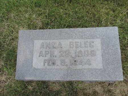 BELEC, ANNA - Franklin County, Ohio | ANNA BELEC - Ohio Gravestone Photos