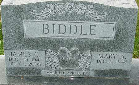BIDDLE, JAMES C - Franklin County, Ohio | JAMES C BIDDLE - Ohio Gravestone Photos