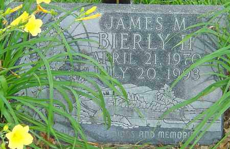 BIERLY II, JAMES M - Franklin County, Ohio | JAMES M BIERLY II - Ohio Gravestone Photos