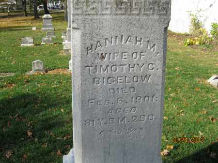 MARSHALL BIGELOW, HANNAH - Franklin County, Ohio | HANNAH MARSHALL BIGELOW - Ohio Gravestone Photos