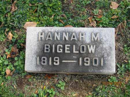 BIGELOW, HANNAH - Franklin County, Ohio | HANNAH BIGELOW - Ohio Gravestone Photos