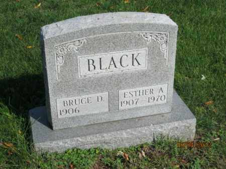 BLACK, BURCE DOUGLAS - Franklin County, Ohio | BURCE DOUGLAS BLACK - Ohio Gravestone Photos