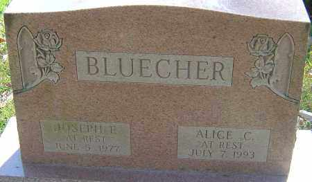 BLUECHER, ALICE - Franklin County, Ohio | ALICE BLUECHER - Ohio Gravestone Photos