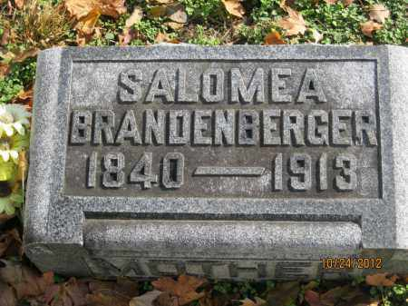 BRANDENBERGER, MARIA SALOMEA - Franklin County, Ohio | MARIA SALOMEA BRANDENBERGER - Ohio Gravestone Photos
