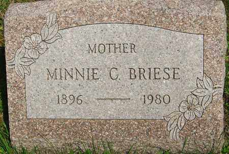 BRIESE, MINNIE C - Franklin County, Ohio | MINNIE C BRIESE - Ohio Gravestone Photos