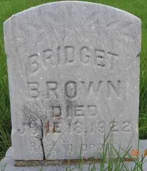 BROWN, BRIDGET - Franklin County, Ohio | BRIDGET BROWN - Ohio Gravestone Photos