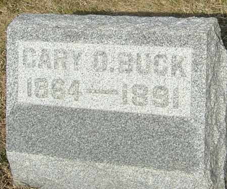 BUCK, CARY OLIVE - Franklin County, Ohio | CARY OLIVE BUCK - Ohio Gravestone Photos