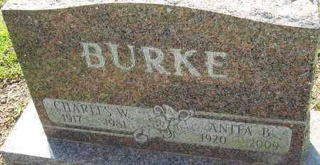 BURKE, ANITA B - Franklin County, Ohio | ANITA B BURKE - Ohio Gravestone Photos