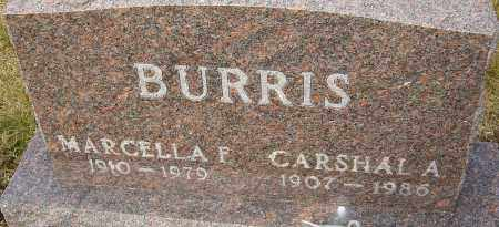 BURRIS, MARCELLA - Franklin County, Ohio | MARCELLA BURRIS - Ohio Gravestone Photos