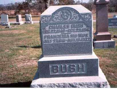 BUSH, FRANCENIA - Franklin County, Ohio | FRANCENIA BUSH - Ohio Gravestone Photos