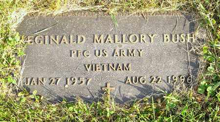 BUSH, REGINALD MALLORY - Franklin County, Ohio | REGINALD MALLORY BUSH - Ohio Gravestone Photos