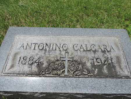 CALCARA, ANTONING - Franklin County, Ohio | ANTONING CALCARA - Ohio Gravestone Photos