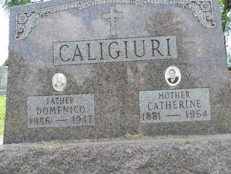 CALIGIURI, DOMENICO - Franklin County, Ohio | DOMENICO CALIGIURI - Ohio Gravestone Photos