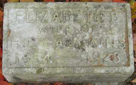 CAULKIN, ELIZABETH - Franklin County, Ohio | ELIZABETH CAULKIN - Ohio Gravestone Photos
