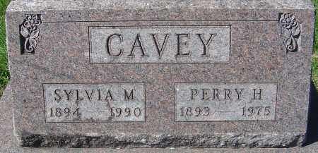 CAVEY, PERRY H - Franklin County, Ohio | PERRY H CAVEY - Ohio Gravestone Photos