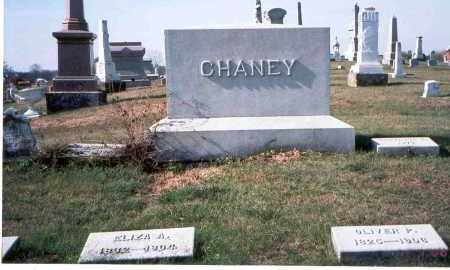 CHANEY, ELIZA A. - Franklin County, Ohio | ELIZA A. CHANEY - Ohio Gravestone Photos