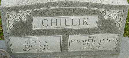 CHILLIK, ELIZABETH - Franklin County, Ohio | ELIZABETH CHILLIK - Ohio Gravestone Photos