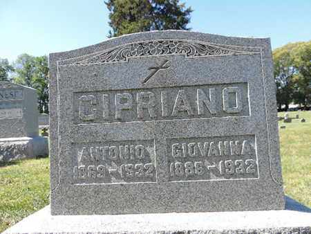 CIPRIANO, ANTONIO - Franklin County, Ohio | ANTONIO CIPRIANO - Ohio Gravestone Photos