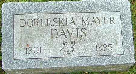 MAYER DAVIS, DORLESKIA - Franklin County, Ohio | DORLESKIA MAYER DAVIS - Ohio Gravestone Photos