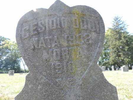 DDOT, CESIOIO - Franklin County, Ohio | CESIOIO DDOT - Ohio Gravestone Photos