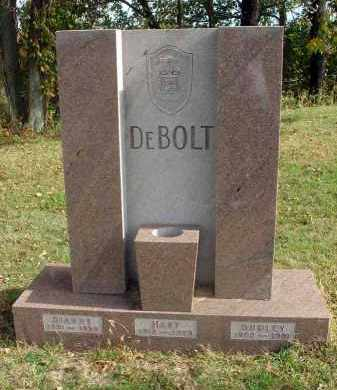 DEBOLT, MARY - Franklin County, Ohio | MARY DEBOLT - Ohio Gravestone Photos