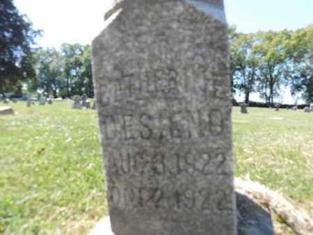 DESIENO, CATHERINE - Franklin County, Ohio | CATHERINE DESIENO - Ohio Gravestone Photos