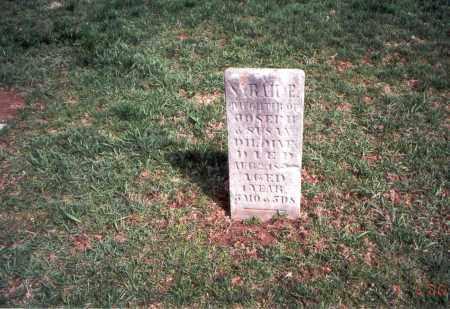 DILDINE, SARAH E. - Franklin County, Ohio | SARAH E. DILDINE - Ohio Gravestone Photos