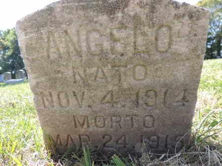 DIMATTE., ANGELO - Franklin County, Ohio | ANGELO DIMATTE. - Ohio Gravestone Photos