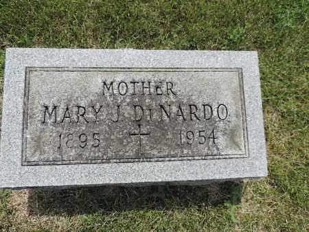 DINARDO, MARY J. - Franklin County, Ohio | MARY J. DINARDO - Ohio Gravestone Photos